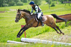 Rider on horse is overcomes the open ditch Stock Photo