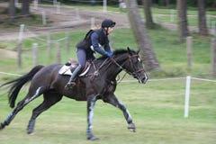 Rider on horse at Saumur France Royalty Free Stock Image
