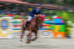 Rider and horse at show jumping Royalty Free Stock Photos