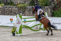 Rider and horse at show jumping Royalty Free Stock Images
