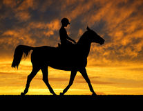 Rider on a horse Royalty Free Stock Photos