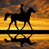 Rider on a horse Royalty Free Stock Photography