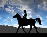 Rider on a horse Royalty Free Stock Image