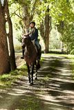 Rider and horse in the woods. Female rider and horse in the forest Stock Photo