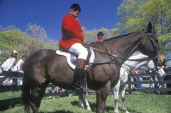Rider on horseback observing steeplechase field, Royalty Free Stock Image