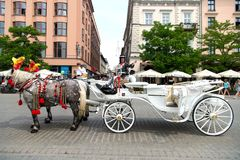 Rider invite tourists to horse carriage ride in Krakow, Poland. Krakow, Poland - June 04, 2016: rider woman invite tourists to horse carriage ride on city street Stock Image