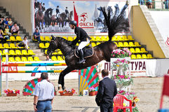 Rider on jump horse Stock Photos