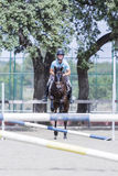 Rider jumping with horse Stock Image