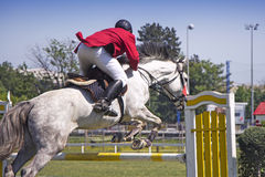 Rider jumping on horseback Royalty Free Stock Images