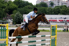 Rider jumping over the barrier-2 Royalty Free Stock Photos