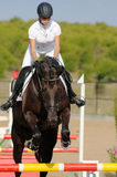 Rider in the jumping show Royalty Free Stock Photography