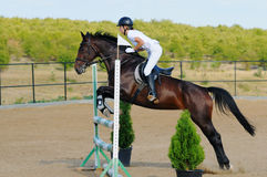 Rider in the jumping show Royalty Free Stock Photos