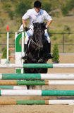 Rider in the jumping show Royalty Free Stock Images