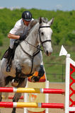 Rider in jumping show Royalty Free Stock Image
