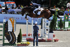 The rider jumps double fence Stock Image