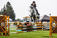 Rider Jumps Horse At Horse Show Royalty Free Stock Photo