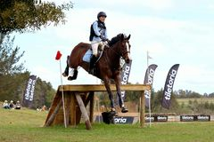 South African Eventing Champion 2017 Stock Photo