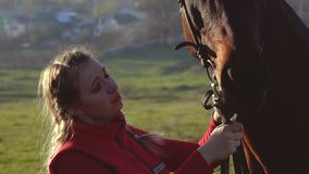 Horsewoman kisses a horse at sunset. Slow motion. Side view. Close up. Rider kisses and strokes his horse at sunset. Slow motion. Side view. Close up stock video