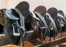 Rider Leather Saddles on fence. Livestock royalty free stock images