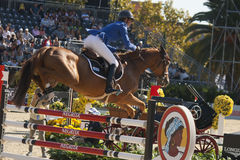 Rider LEPREVOST, Pénélope. France. CSIO Barcelona. Stock Photos