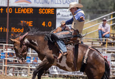 Rider Looking Steady de gain Photos stock