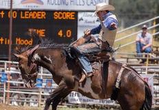 Rider Looking Steady que gana Fotos de archivo