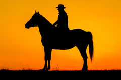 Rider man and his horse in the sunset Royalty Free Stock Image
