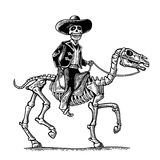 The rider in the Mexican man national costumes galloping on skeleton horse. Royalty Free Stock Image