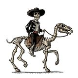 The rider in the Mexican man national costumes galloping on skeleton horse. Royalty Free Stock Photo