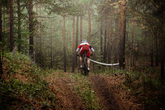 Rider mountain bike riding autumn forest in fog Royalty Free Stock Photography