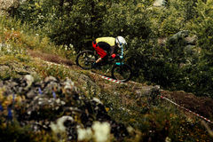 Rider mountain trail downhill Stock Photography