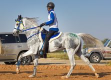 Rider participating in an endurance race. Dubai, UAE - Dec 19, 2014: Rider and his horse participating in a desert endurance race Royalty Free Stock Photo