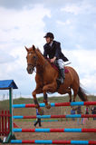 Rider on a posh bay horse Royalty Free Stock Images