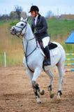 Rider on a posh white horse Stock Photos