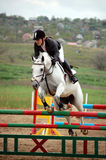 Rider on a posh white horse Stock Images