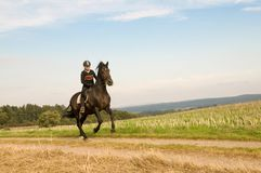 Rider rides at a gallop across the field. Stock Photo