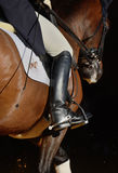 Rider's leg. On dressage competition stock photography