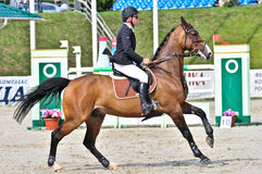 Rider at the show jump horse Stock Photo