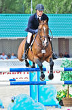 Rider on show jump horse Stock Image
