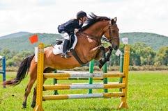 Rider show jumps Stock Photos