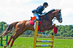 Rider show jumps Royalty Free Stock Photography