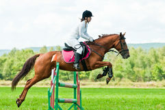 Rider on show jumps horse Royalty Free Stock Images