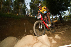 Rider in UCI MTB World Cup over rocky section Royalty Free Stock Photo