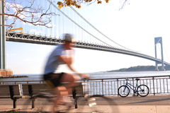 Rider and Verrazano-Narrows Bridge. A cyclist rides on the fast track close to Verrazano-Narrows Bridge , The largest and longest bridge in New York City stock photos