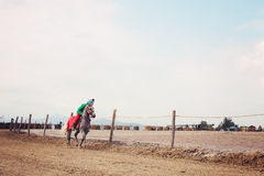 Rider warming up his horse. Before the race Royalty Free Stock Photos