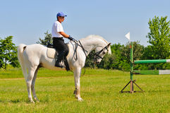 Rider on white arabian horse Stock Photos