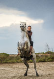 Rider on the White Camargue horse. Royalty Free Stock Images