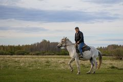 A rider on a white horse in the field. A fermer on a white horse in the field royalty free stock images