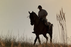 Rider With His Horse Into The Sunset Royalty Free Stock Images