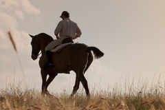 Rider With His Horse Into The Sunset Royalty Free Stock Photo